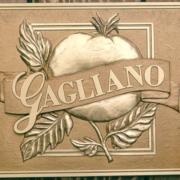 Bronze And Aluminum Seals And Logos Gagliano Logo