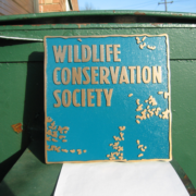 Cast Bronze Plaques Wildlife Conservation Society Colored Plaque